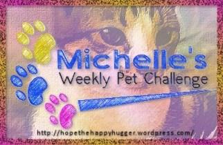 http://hopethehappyhugger.files.wordpress.com/2013/09/petchallenge.jpg