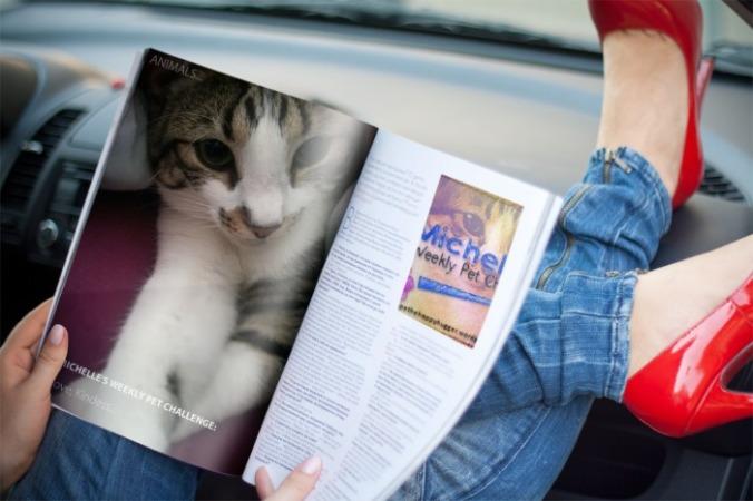 MagazinePetchallenge