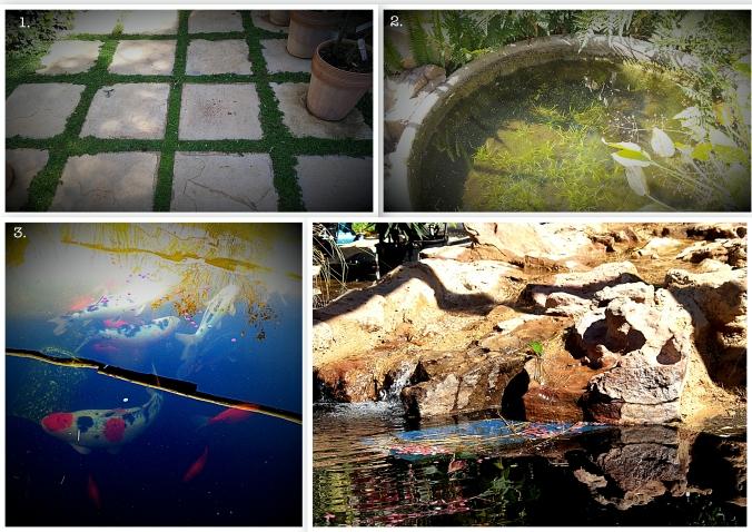 gardencollage2_Fotor