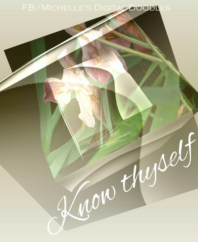 My Effect 7_Fotor_Fotor new