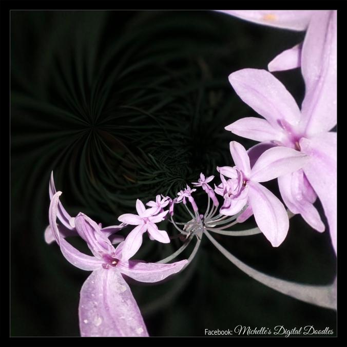 purpleblack_Fotor