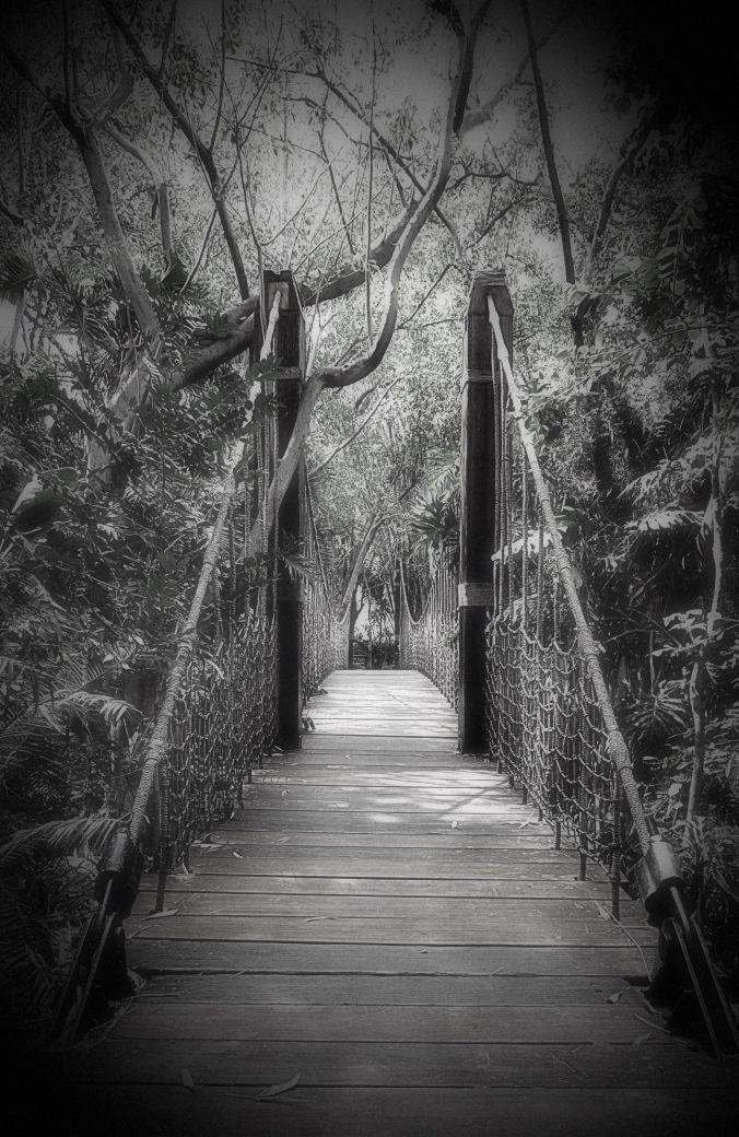 Bridge-p