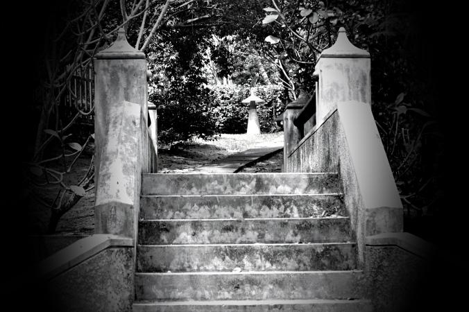 Steps BW-p